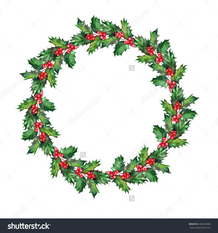 Holly wreath - a wreath composed of hand-painted watercolor sprigs of holly, white background