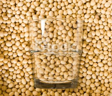 Soy Milk Concept Royalty Free Stock Photo