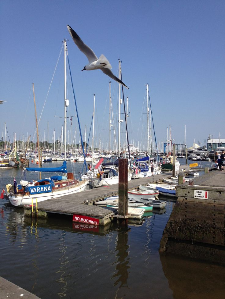 a perfect day at the quay in Lymington a short drive from Daisybank Cottage New Forest
