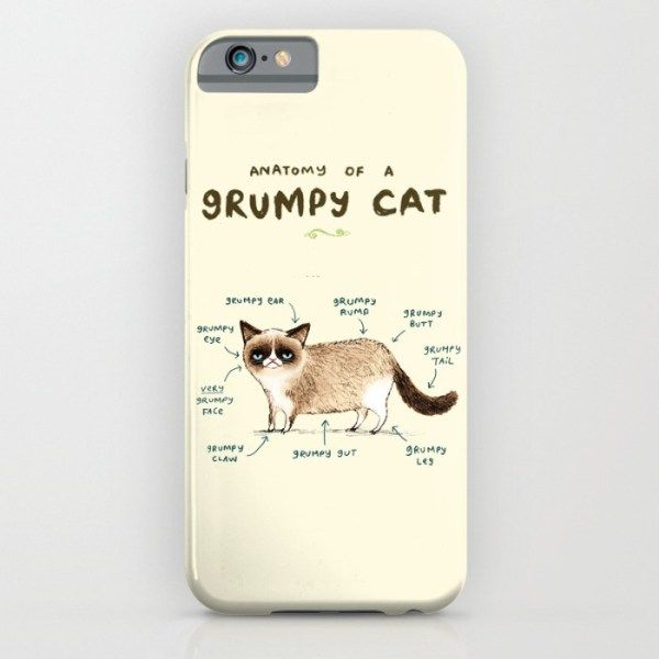 anatomy-of-a-grumpy-kitty-cases
