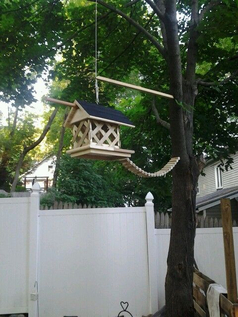 Squirrel feeder. Our furry friends love it!!