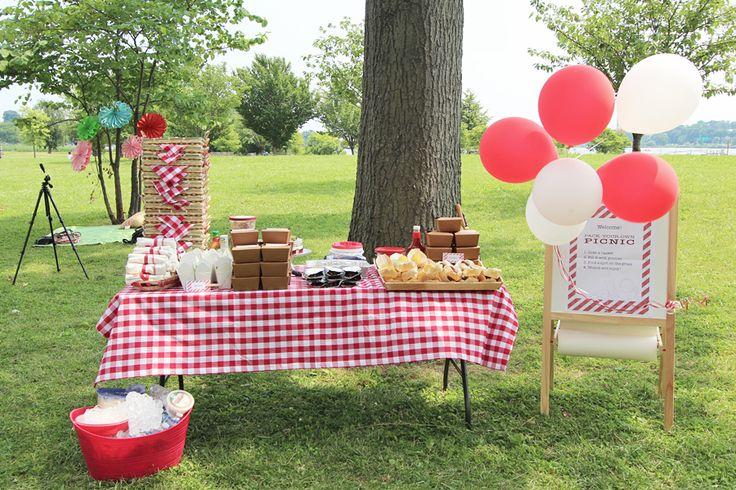 my picnic essay