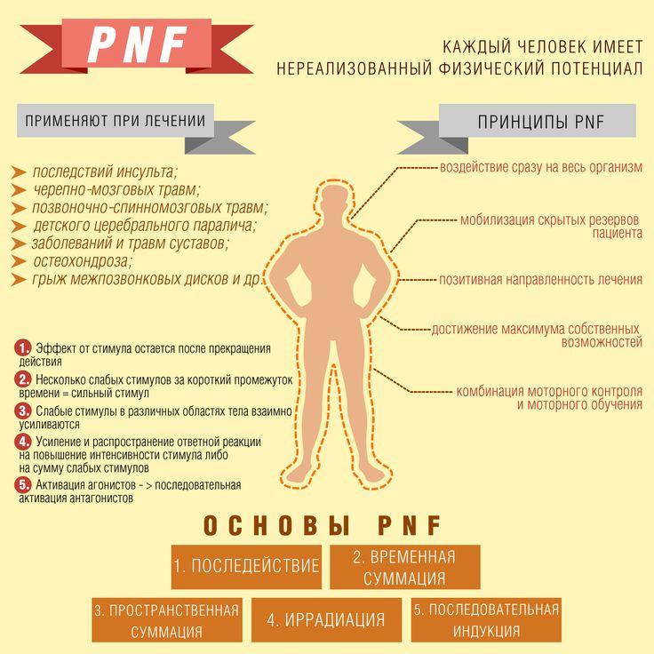 PNF: использование скрытого физического потенциала  PNF (proprioceptive neuromuscular facilitation) – методика нейромышечного проторения, основанная на чувстве собственного тела, или мышечном чувстве.  https://vk.com/madingroup?w=wall-21627252_310%2Fall