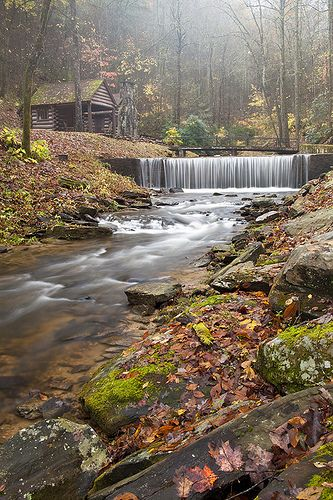 Cabin in the Forest, Shoal Falls Farm, Henderson Cty, NC