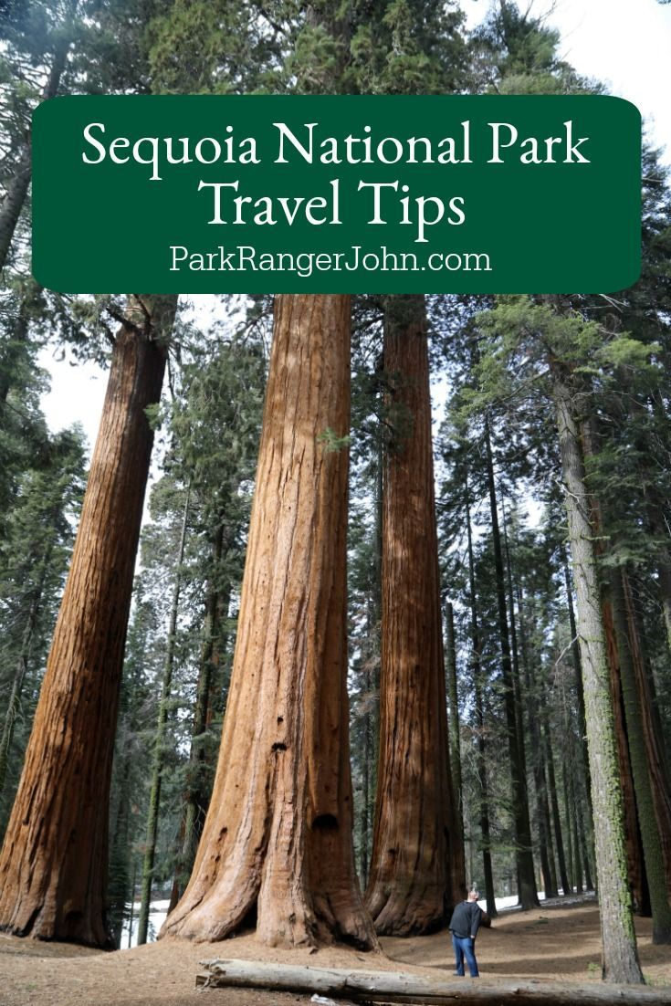 Sequoia National Park Travel Tips