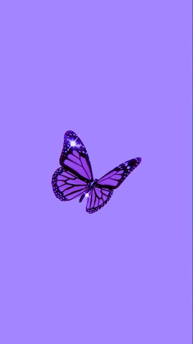 Purple Butterfly Wallpaper Aesthetic : purple, butterfly, wallpaper, aesthetic, Cristina, Binns, Iphone, Background, Purple, Butterfly, Wallpaper,, Wallpaper, Iphone,