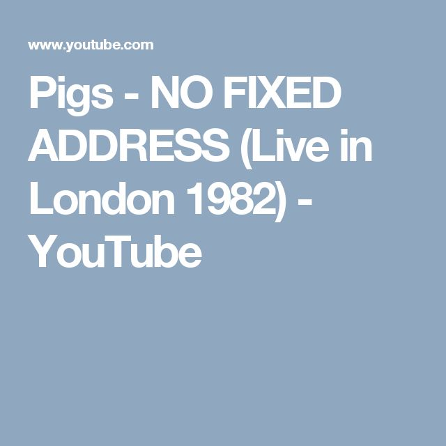 Pigs  -  NO FIXED ADDRESS (Live in London 1982) - YouTube