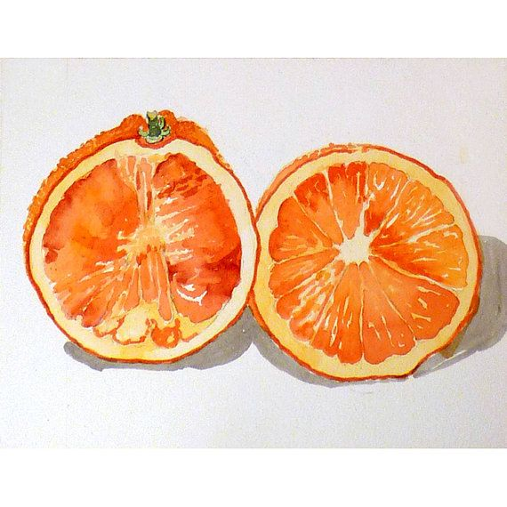 """What's Inside an Orange"" 8x10 in. Watercolor Painting Print...$21.00 Orange Fruit Art ....by LaBerge"