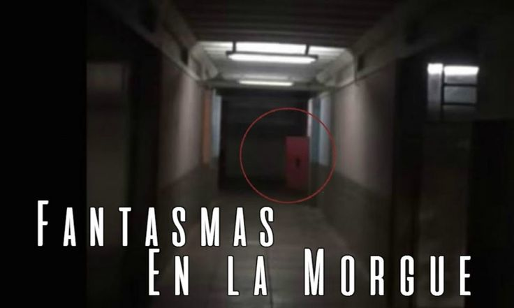 ICYMI: Terrible Manifestación Paranormal en la Morgue (Video Paranormal)