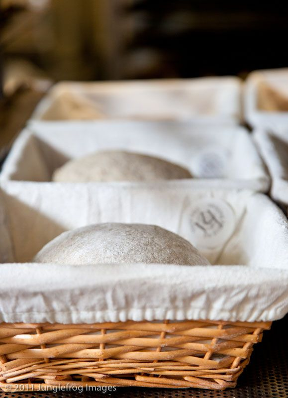 Our dough rising in their baskets bread baking course part I