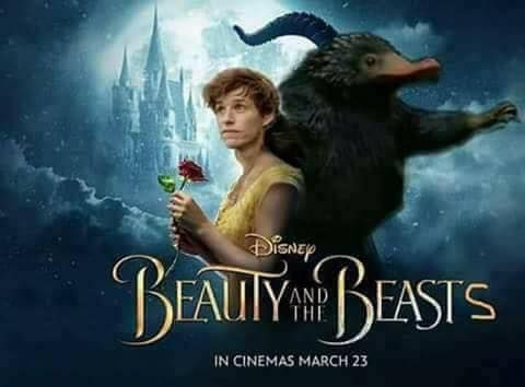 The only film that matters