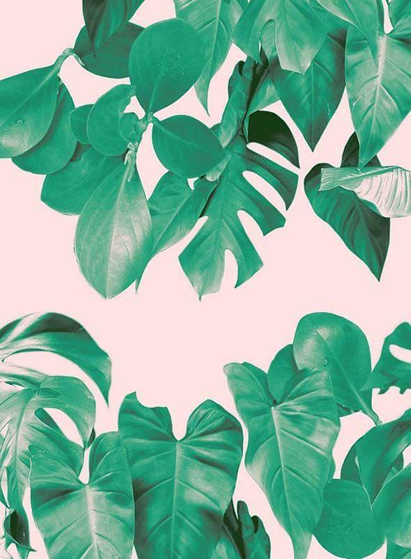 Profile | Rhianna Ellington