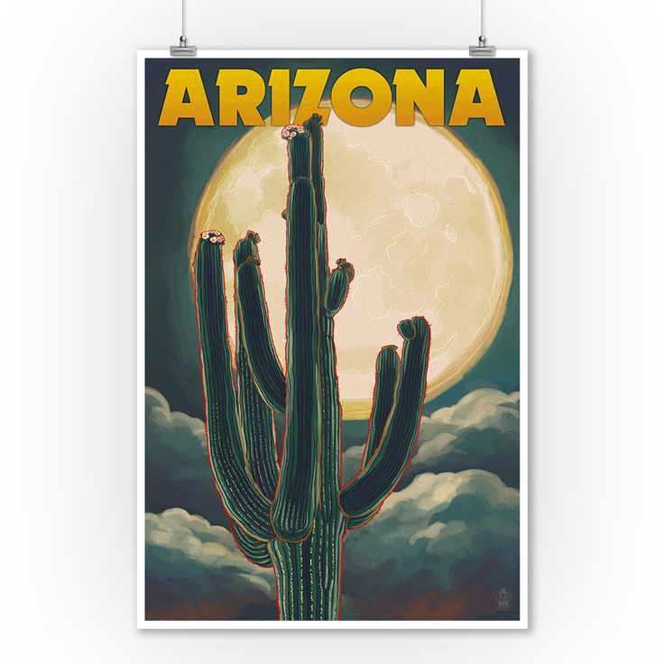 Arizona Cactus & Full Moon - Lantern Press Artwork (9x12 Art Print) #Vintage