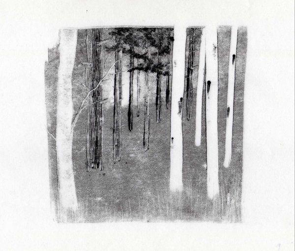woodland monoprint by emm4239.deviantart.com on @deviantART