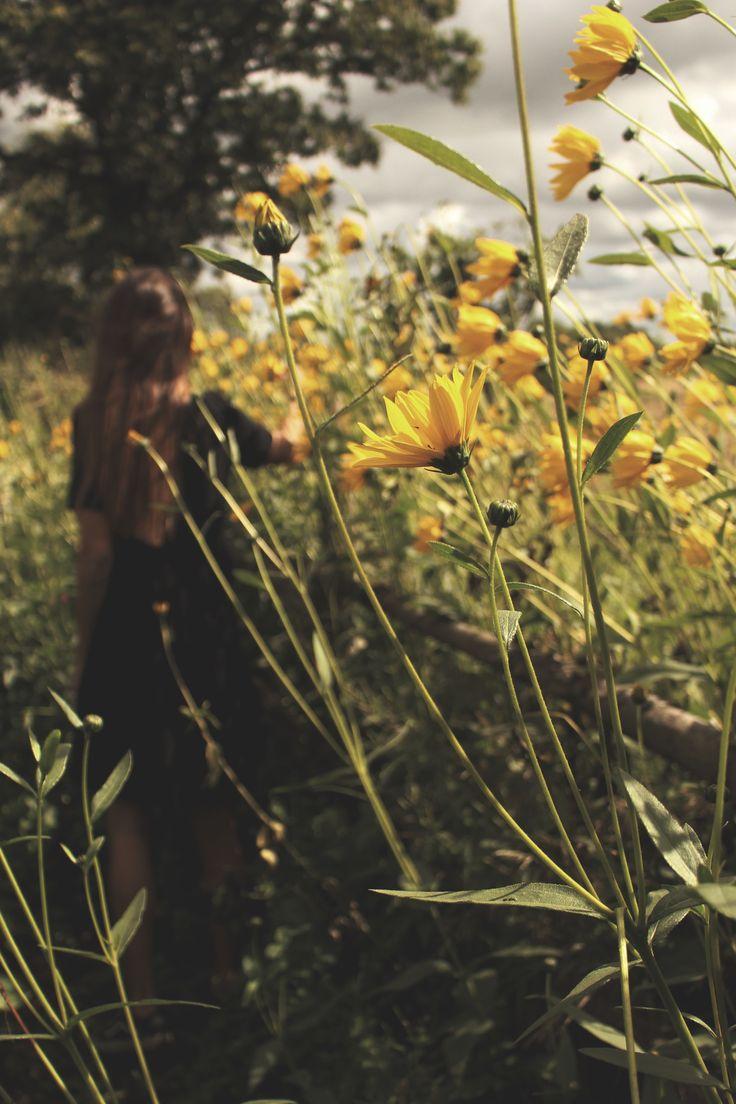 My world of flowers