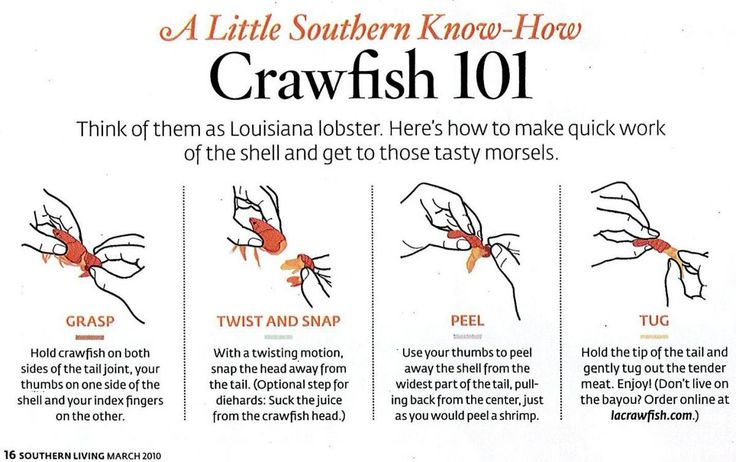 Posted by Benson Last year before the crawfish boil I posted an article about what crawfish are, where they come from, and most important...
