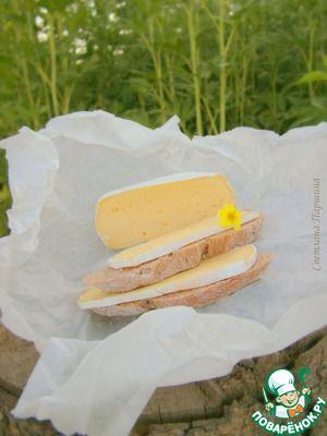 """Домашний сыр с благородной белой плесенью """"Мягкие сыры с белой корочкой из сырого молока фермерского производства готовы к потреблению через 12 дней после начала производства, в этот период они считаются молодыми и хорошо подходят для перевозки. Французы предпочитают зрелые сыры – выдерживавшиеся не менее 3 недель, и очень зрелые – 30–35-дневной выдержки. """" +  большое обсуждение"""