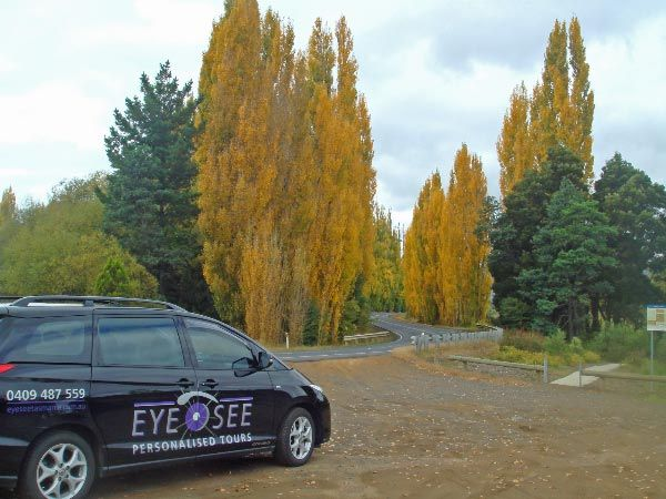 Planning ahead for the autumn Colours of the Derwent Valley. Photo by Eye See Personalised Tours; article for  think-tasmania.com