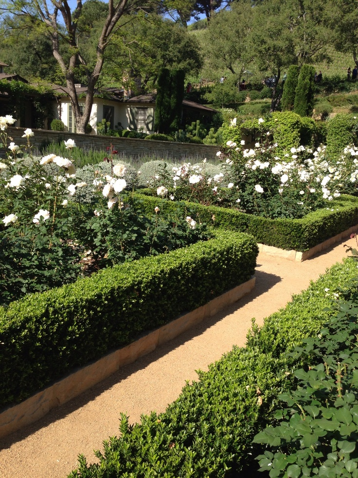 13 Best Images About Box Hedge On Pinterest