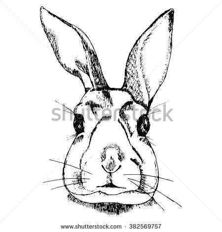 Black and white Rabbit illustration on simple white background