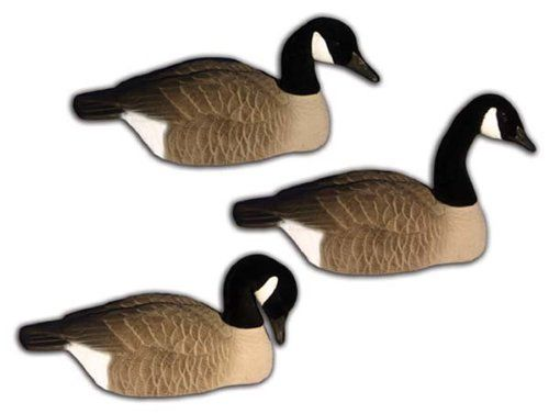 6 - Pk. Hidgon Standard Size Half - Shell Canada Goose Decoys. Stackable convenience. Awesome detailed authenticity! When it comes to your decoys it's time to get real my friend! And you can't get m...