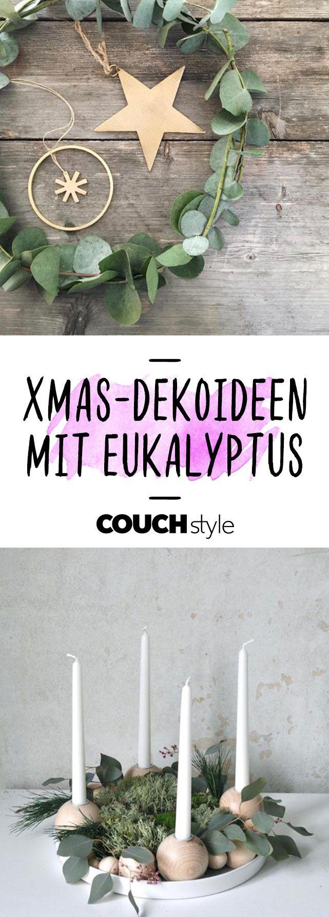 Eukalyptus • Bilder & Ideen