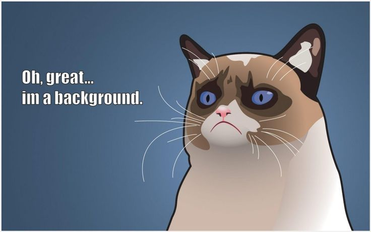 Funny Computer Backgrounds Meme : Best funny wallpaper images funny wallpapers