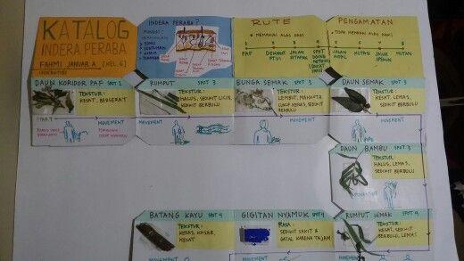 Katalog sensori peraba - fahmi januar