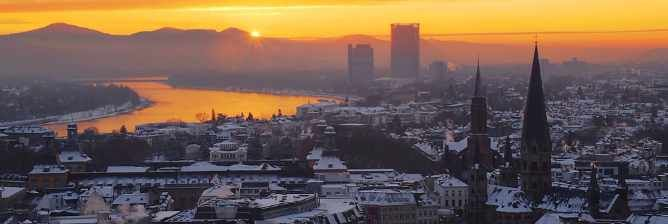 The Top 8 Things To Do and See in Bonn, Germany