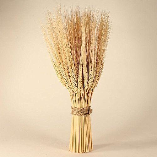 Golden Wheat Sheaves Nettleton Hollow http://smile.amazon.com/dp/B00IC4QFQ4/ref=cm_sw_r_pi_dp_qSynub1RCBF5H