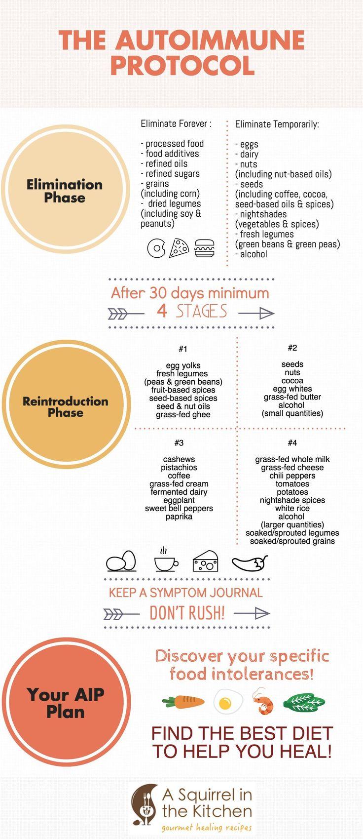| Reintroducing Foods on the Paleo Autoimmune Protocol (AIP) | http://asquirrelinthekitchen.com