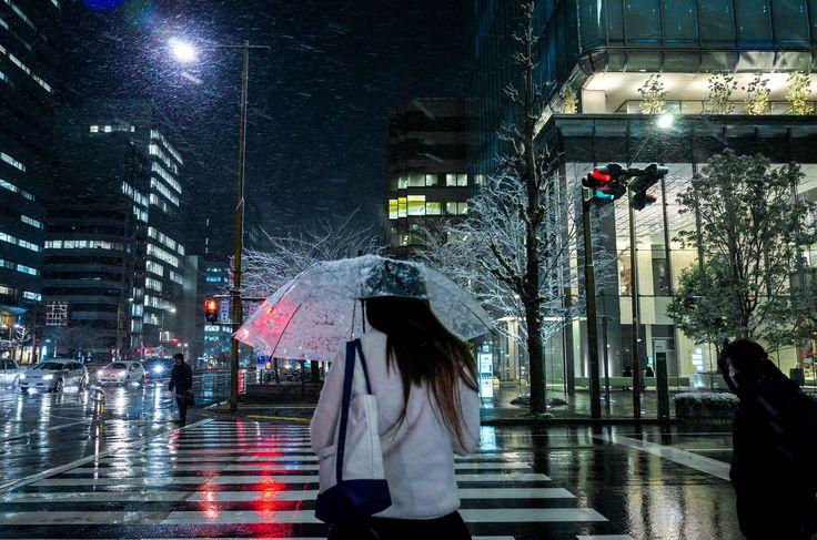 https://flic.kr/p/RbiNiS | Sakura-Dori, Marunouchi 3-chome, Nagoya | すみませんが,2年前です。 2015/03/10, Ricoh GR (GR LENS 28mm F2.8), 18.3 mm, f/3.5, 1/40sec, ISO800