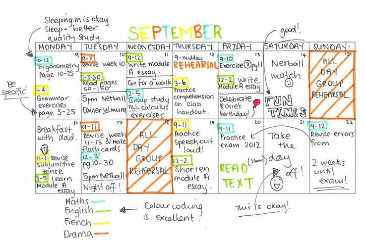 What an awesome study timetable should look like