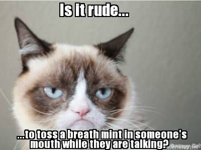 #GrumpyCat #meme For more Grumpy Cat stuff, gifts, quotes and meme visit…