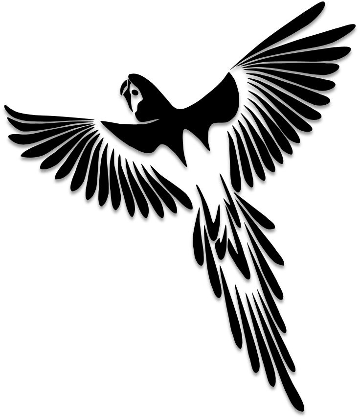 Best 25+ Bird silhouette art ideas on Pinterest | Beginner ...