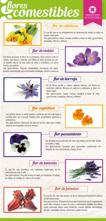 ¡Flores Comestibles!   Artículo completo en: http://bit.ly/1fFnKDq