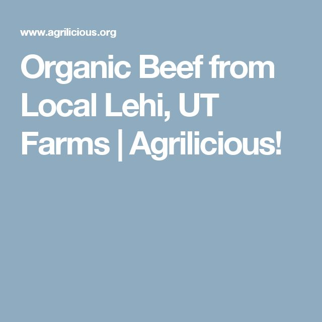 Organic Beef from Local Lehi, UT Farms   Agrilicious!