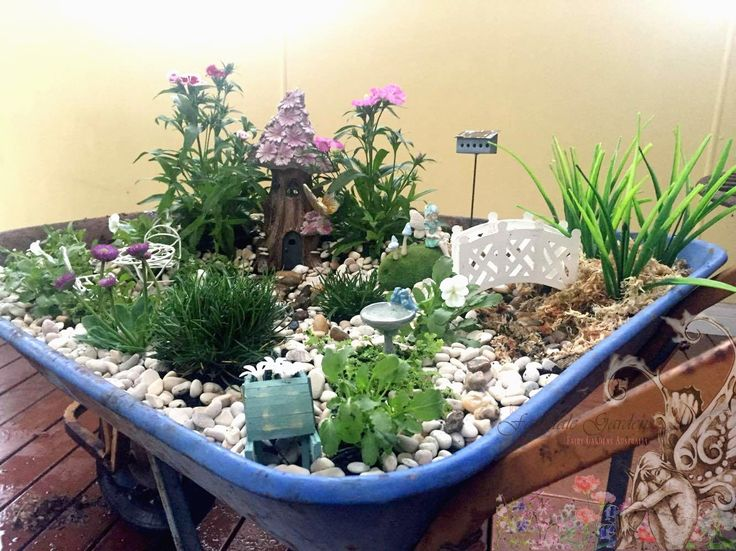 309 best images about terrariums tray gardens and more on for Tray garden designs