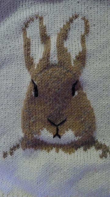 Ravelry: Peter Rabbit pattern by Pat Menchini