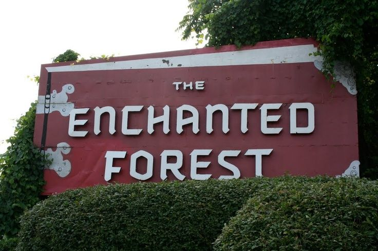 enchanted forest md    The Enchanted Forest   Howard County, MD