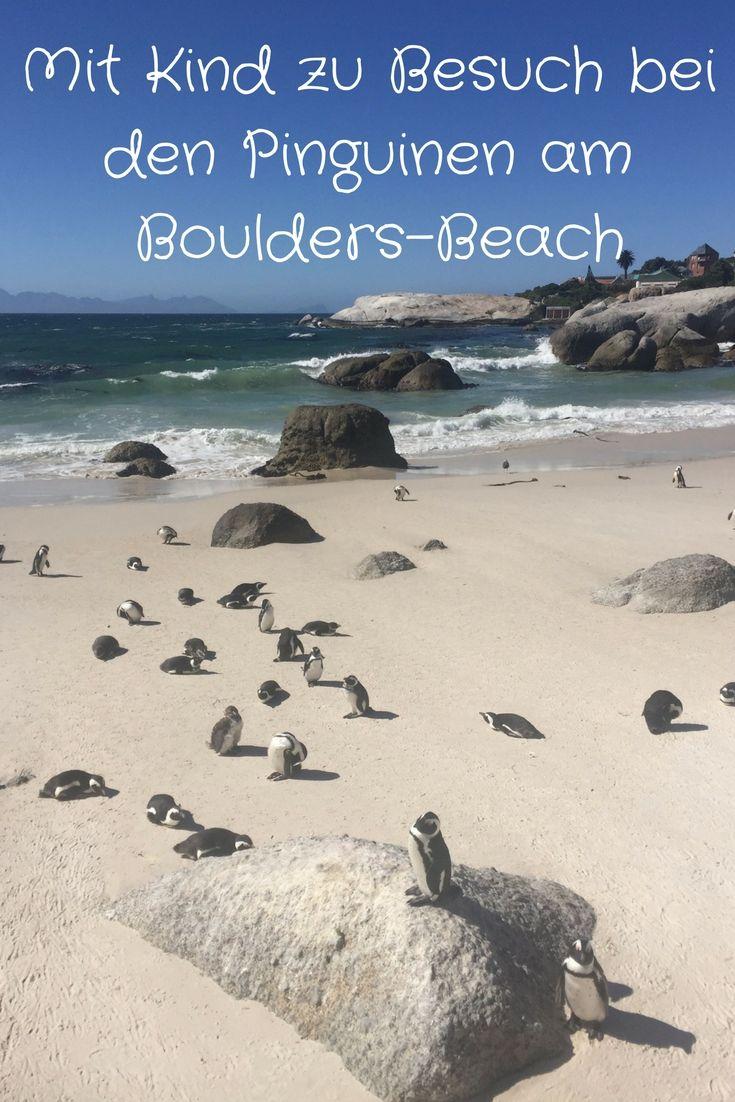 Nicht verpassen sollten Kapstadt-Besucher die unvergessliche Tagestour in Richtung Süden zum Kap der Guten Hoffnung. Zunächst geht es vorbei am Devil's Peak und vorbei an Kirstenbosch und Constantia zum Boulders-Beach. Dort lohnt sich in jedem Fall der (inzwischen kostenpflichtige) Besuch die Pinguin-Kolonie. Süß!