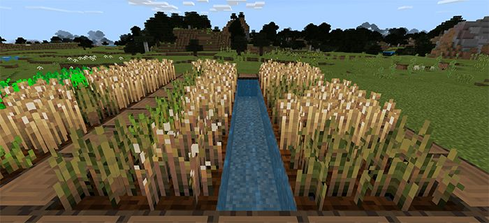Duckie S Textures Iii Resource Pack Texture Packs For Minecraft Pe Mcpe Box Texture Packs Texture Minecraft