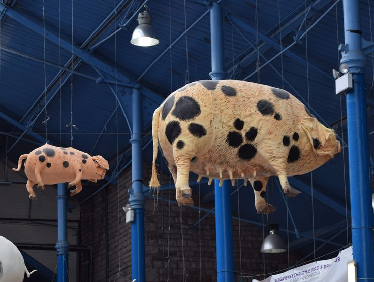 Flying pigs in Abergavenny Market Hall