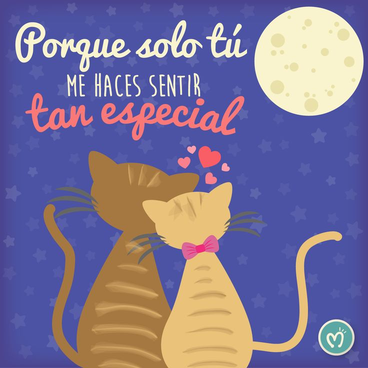 Porque solo tú me haces sentir tan especial. #You #Love #FábricaDeSueños