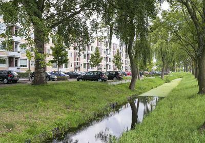 Marnixstraat 103 in Alphen Aan Den Rijn 2406 VS (Choiz Makelaars & Taxateurs)