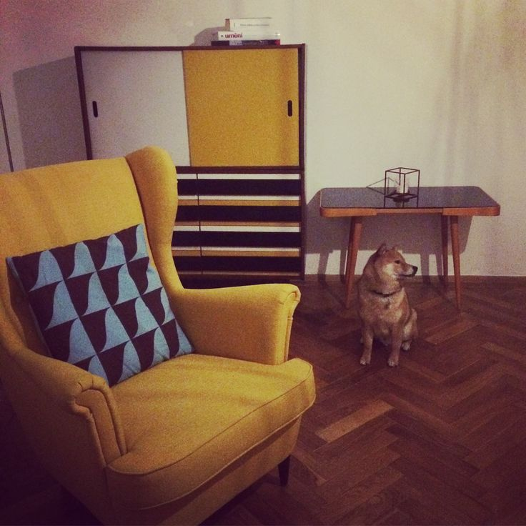 Small black brussel table. We are collectors. New one. #retro #czechdesign #retrodesign #brussel #furniture #retrofurniture #livingroom #homedesign #yellow #doge