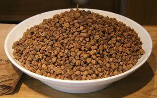 Propiedades de la chufa (Cyperus esculentus).