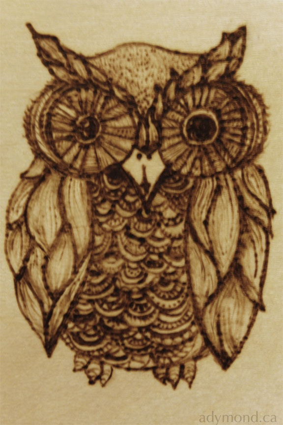 Owl, Alannah Dymond, Pyrography on panel, 2013