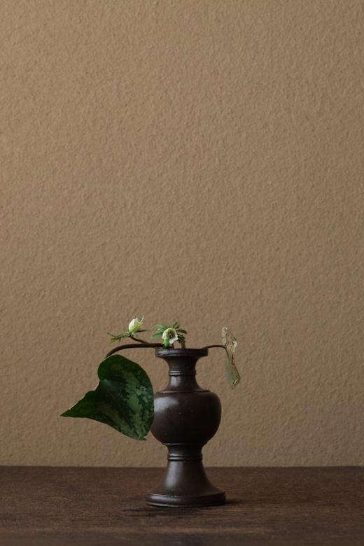 2012年3月2日(金)春の花らしく、寛いだ姿に。 花=寒葵(カンアオイ)、節分草(セツブンソウ) 器=古銅亜字形華瓶(鎌倉時代)