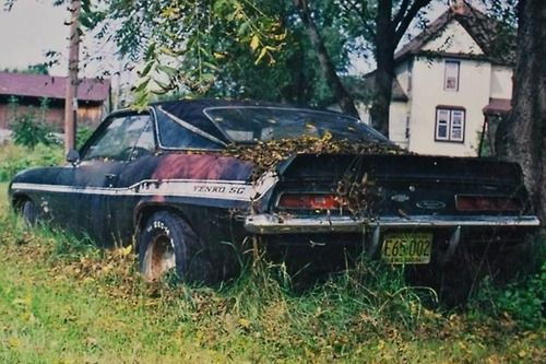 69 Yenko Camaro.  Oh my heart!!! Feel like I should go lay flowers & cards next to it... would give me a good cover story if I got caught salvaging parts.